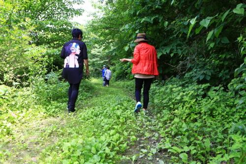 오감이 즐거운 숲길을 걷는다.